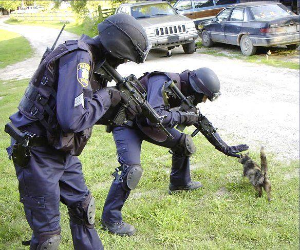 http://funnypics.free.fr/explorer/public/img/s/SWAT.jpg